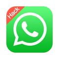 whatsapp plus small
